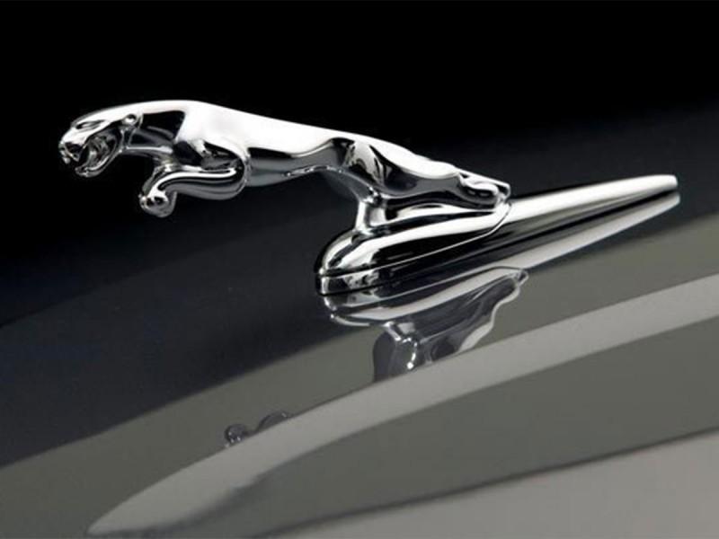 Bonnet leaper Jaguar