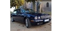 Mesh grille Inserts Jaguar XJ X350