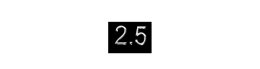 V6 2.5